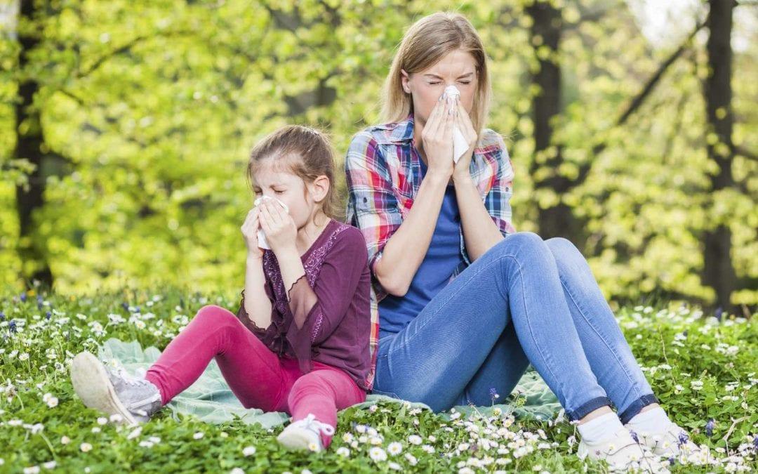 Allergies saisonnières : comment s'en débarrasser ?