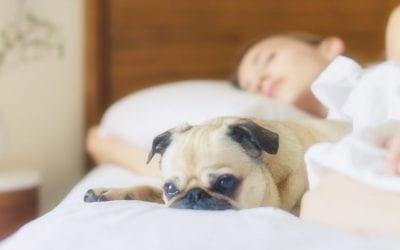 Réflexologie et troubles du sommeil